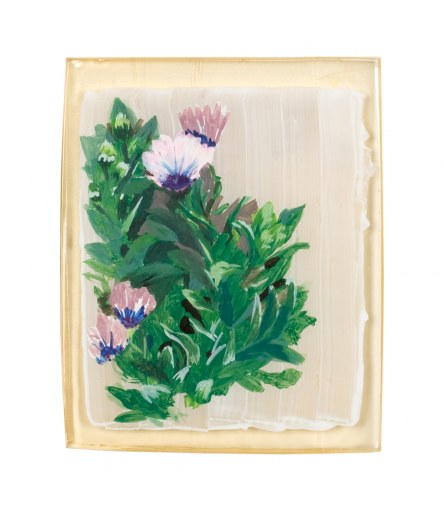 Osteospermum, paint on resin, 14th June 2005, Marie-Claire Raoul