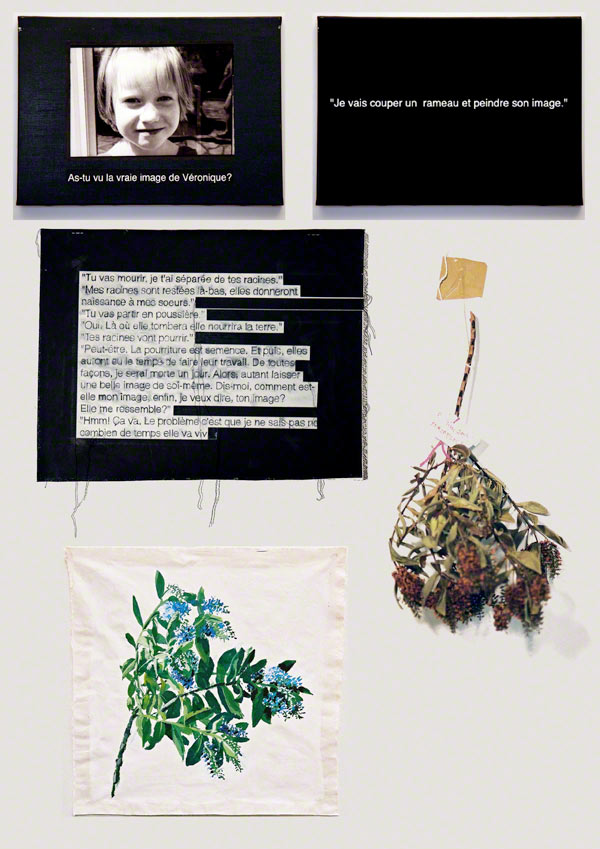 Have you seen the true image of Véronique?, Installation with painture of Veronica, veronica branch, text painted on canvas, Marie-Claire Raoul