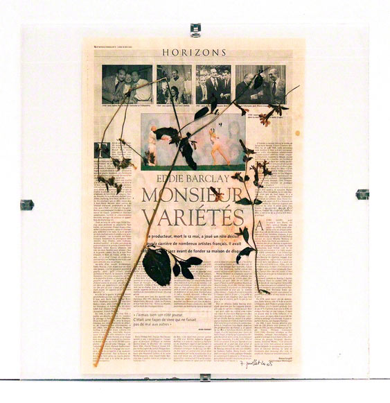 """Flower from Kerzafloch dried on a sheet from the """"Le Monde"""" 17th May 2005 newspaper, Marie-Claire Raoul"""