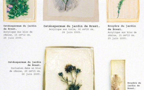 Memorandum, flowers reminding me of the garden in Kerzafloc'h, insertions, paint on hessian, paint on resin, Marie-Claire Raoul