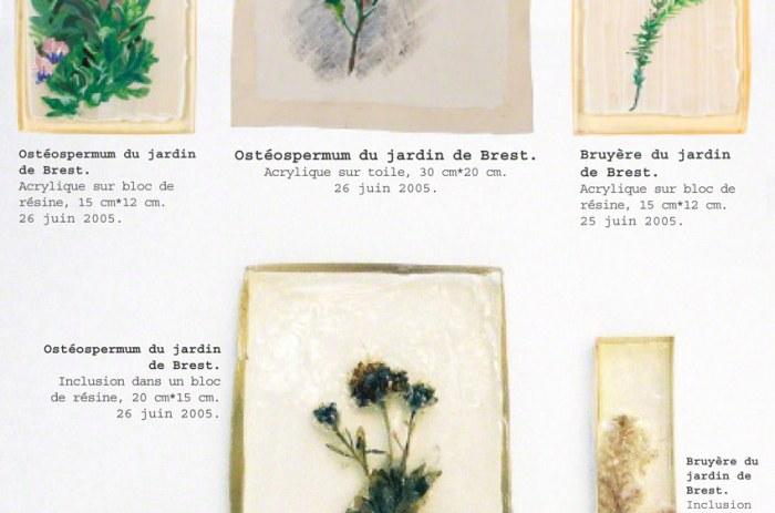 Memorandum, fleurs me rappelant le jardin de Kerzafloch