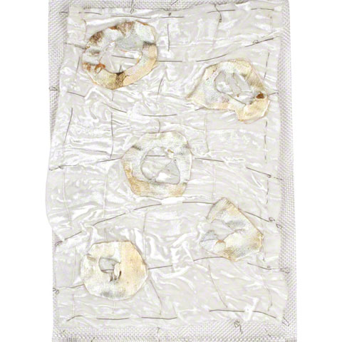 Five silvery fabric cells partially enclosed in resin, sewn to velvet, 30cm*20cm