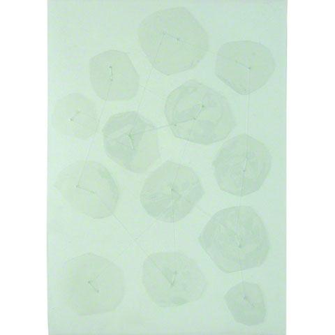 Cellules en polypropylène reliées avec du fil de nylon