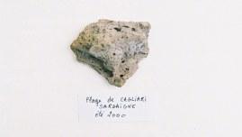 Caillou ramassé sur la plage de Cagliari un jour de l'été 2000