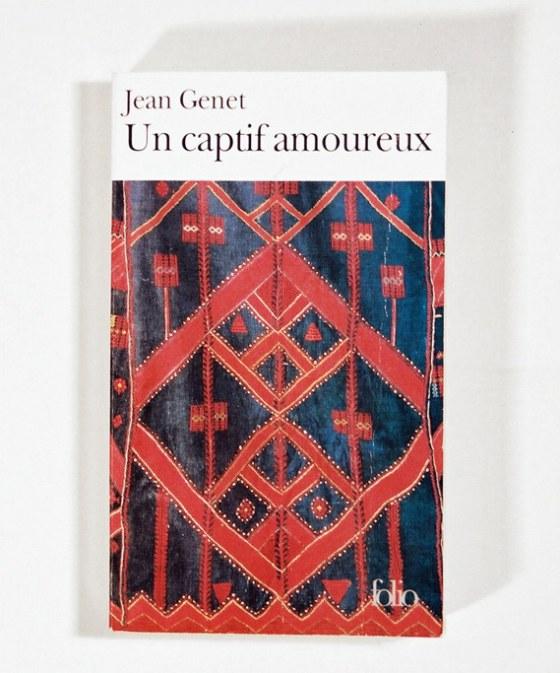 Un captif amoureux, Jean Genet, Marie-Claire Raoul