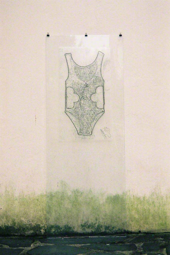 The American Bathing Suit, digital outline of the 16 contour lines, printed on a Rhodoid sheet