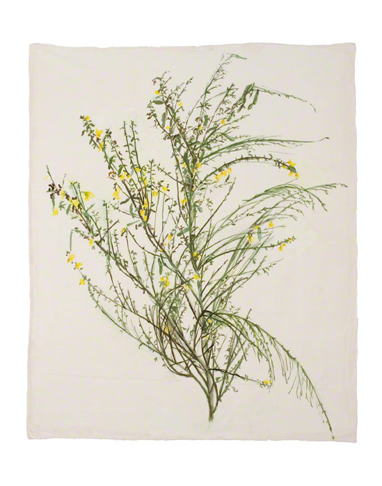 Broom from Kerzafloc'h, acrylic paint on silk, 17th July 2005, 100cm*100cm, Marie-Claire Raoul