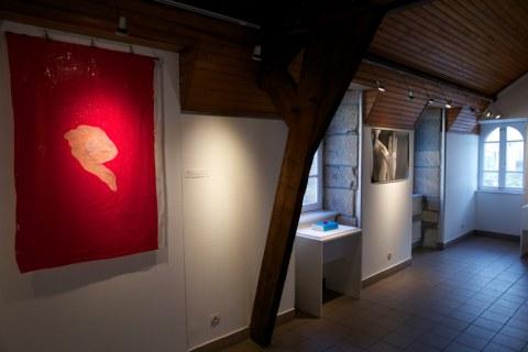 Vue de l'exposition [lcause s'expose], Maison de la Fontaine, Brest, novembre 2015 à janvier 2016