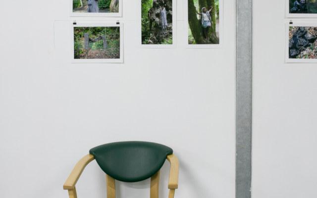 """Baliz 2017, Brest, 7 et 8 octobreoctobre 2017, présentation de la série photographique """"Je voudrais aller me promener dans les bois"""" de Marie-Claire Raoul à l'espace Lcause, Marie-Claire Raoul"""