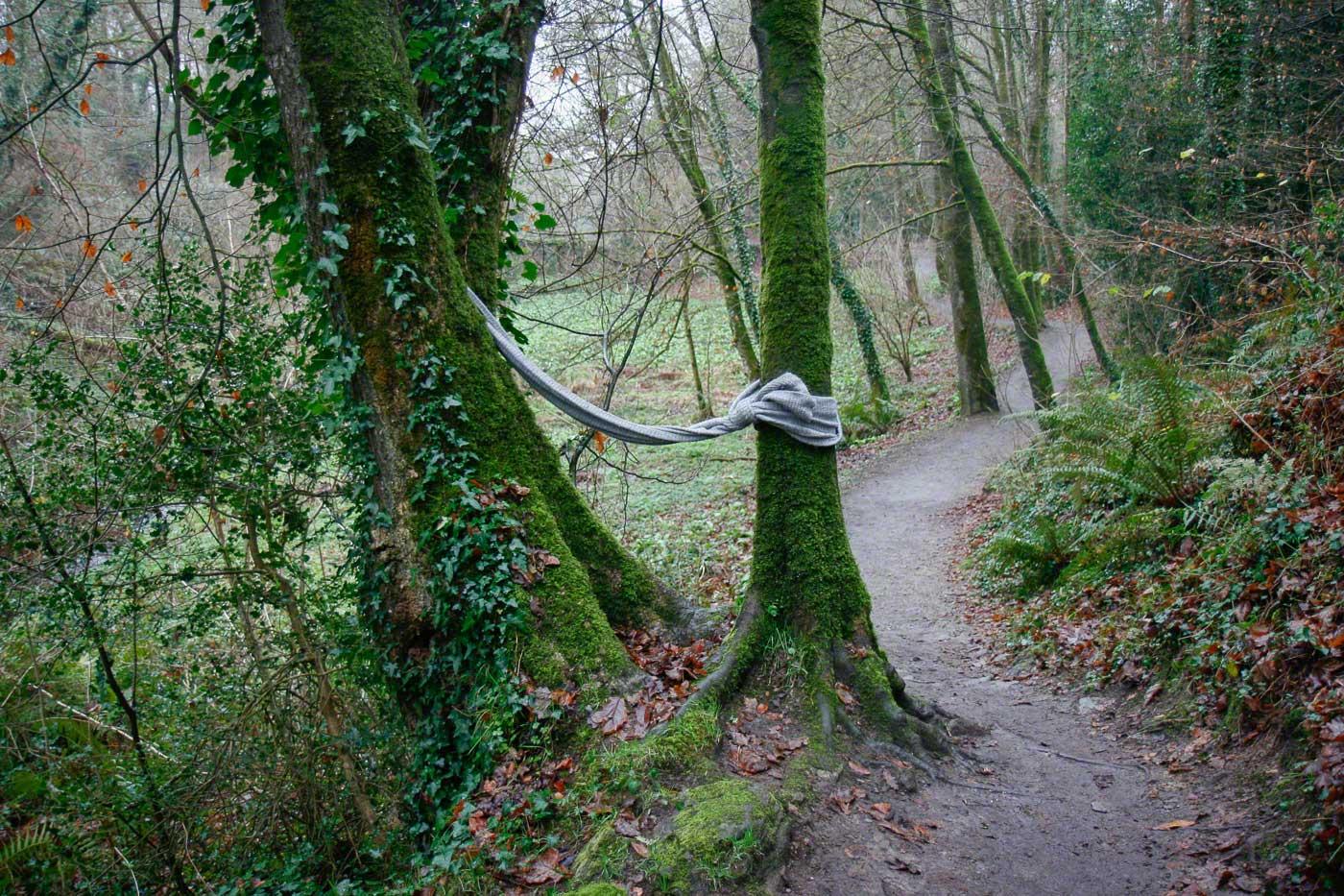Adèle, bois de Keroual, 21 décembre 2016, série photographique [Je voudrais aller me promener dans les bois], photographie réalisée par Marie-Claire Raoul lors d'une résidence à l'espace Lcause